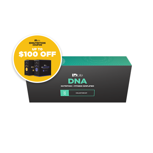 DNA Bundle